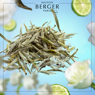 Аромат-наполнитель (Лампа Берже) Maison Berger : PURE WHITE TEA 1000 мл. (116361-BER)