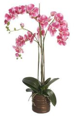 Исскуственные растения PHALAENOPSIS X 3 POTTED purple 37055-SH H90CM